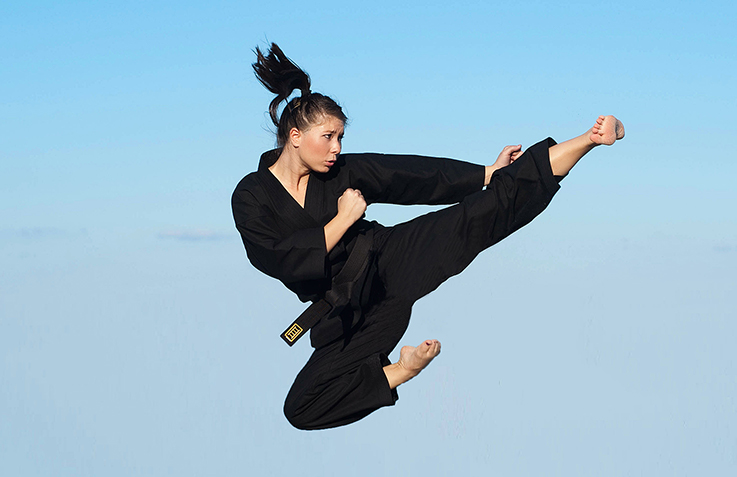 landing_page_images_standards_dojo